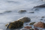 Rendering Tide 4